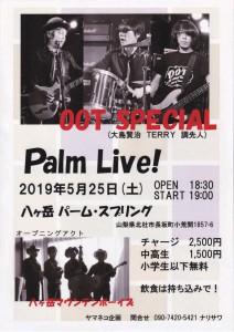 190525_palm